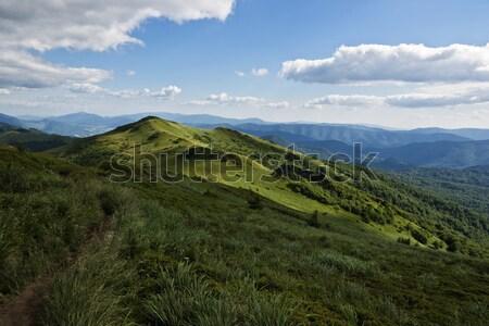 Verde montanha belo Foto stock © pixelman