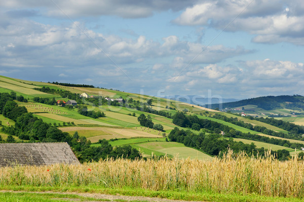 Paisaje alrededor montana regiones Foto stock © pixelman
