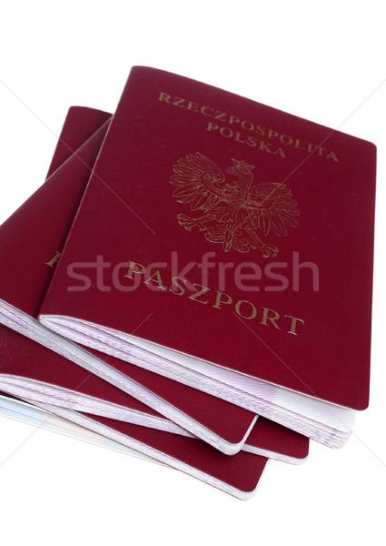 Pasaporte aislado viaje turismo visado Foto stock © pixelman