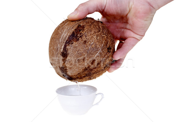 кокосовое молоко белый Кубок изолированный продовольствие Сток-фото © pixelman