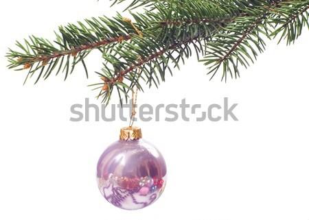 Noel cam top noel ağacı yalıtılmış arka plan Stok fotoğraf © pixelman