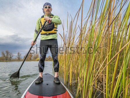 stand up paddling through reed Stock photo © PixelsAway