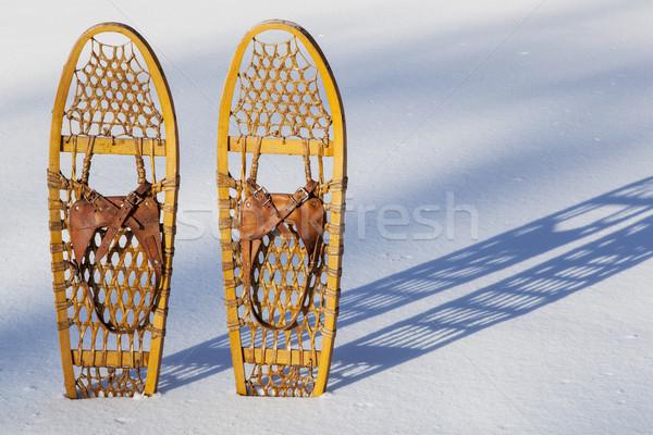 Medve mancs pár klasszikus fából készült árnyék Stock fotó © PixelsAway