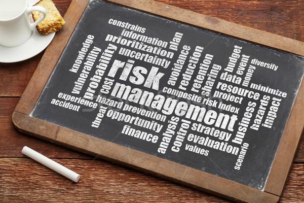 risk management word cloud Stock photo © PixelsAway