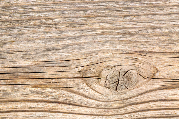 background texture of cedar wood Stock photo © PixelsAway