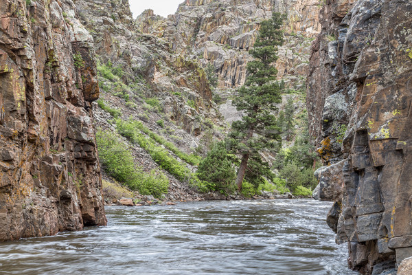 Rocky Mountains  river canyon Stock photo © PixelsAway