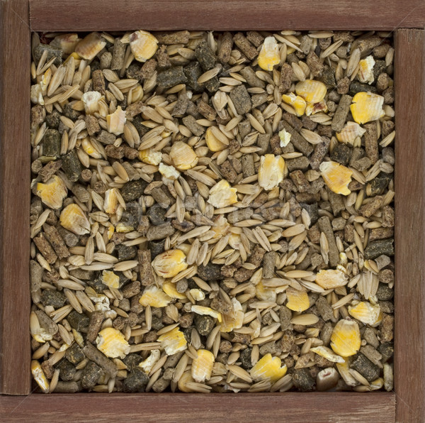horse feed with corn, barley, oats grain and suplement  Stock photo © PixelsAway