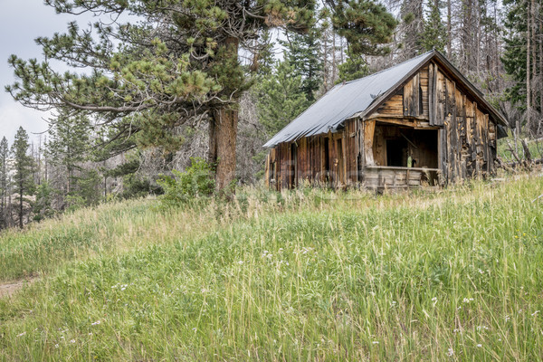 ruins of cabin in Rocky Mountains Stock photo © PixelsAway