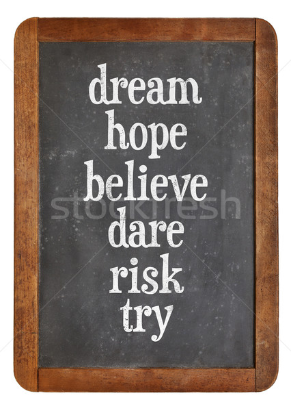 Sogno speranza rischio set motivazionale parole Foto d'archivio © PixelsAway