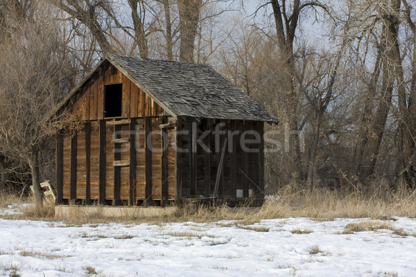 old, small barn in an abandoned farm in Colorado Stock photo © PixelsAway