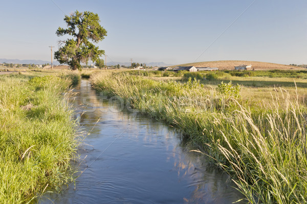 irrigation ditch in Colorado Stock photo © PixelsAway