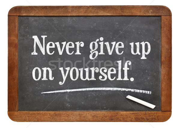 決して 与える アップ あなた自身 やる気を起こさせる アドバイス ストックフォト © PixelsAway