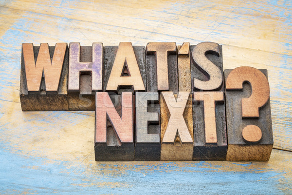 What is next question in wood type Stock photo © PixelsAway