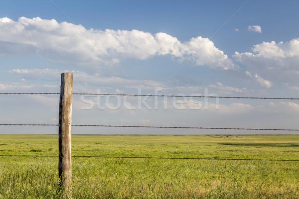 Drutu kolczastego bydła ogrodzenia Colorado Zdjęcia stock © PixelsAway