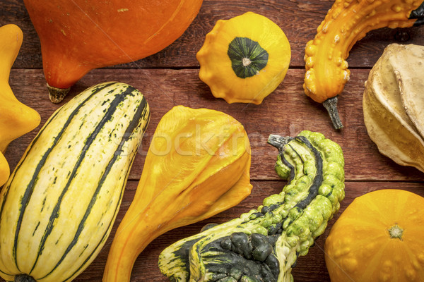 gourd and winter squash collection Stock photo © PixelsAway