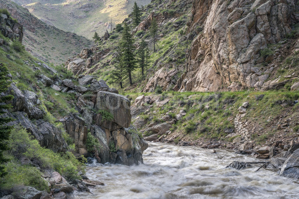 spring runoff of Poudre River in Colorado Stock photo © PixelsAway