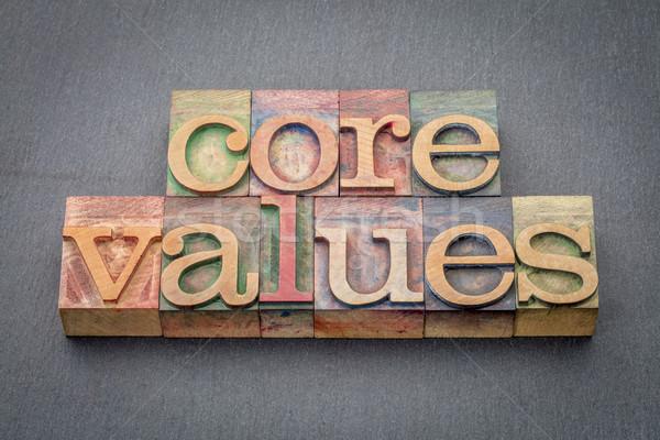 Mag értékek fa szalag szó Stock fotó © PixelsAway