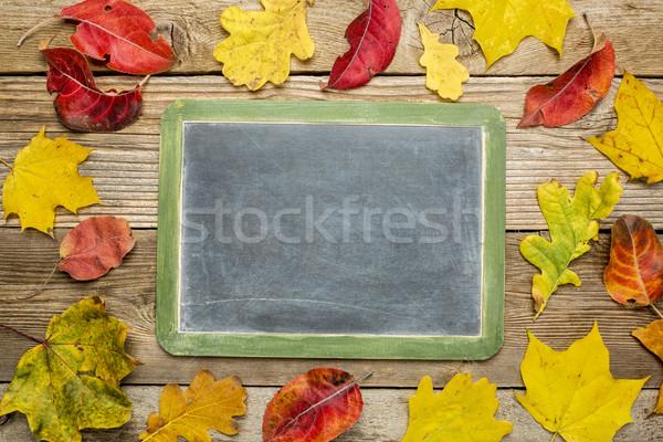 blank slate blackboard  with leaves  Stock photo © PixelsAway