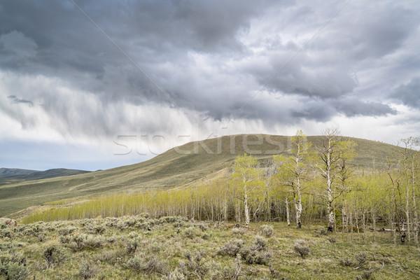 Eső viharfelhők liget észak park tavasz Stock fotó © PixelsAway