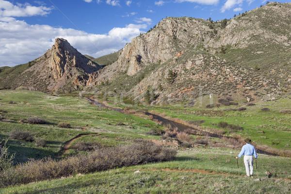 lonely hiker in mountain landscape Stock photo © PixelsAway