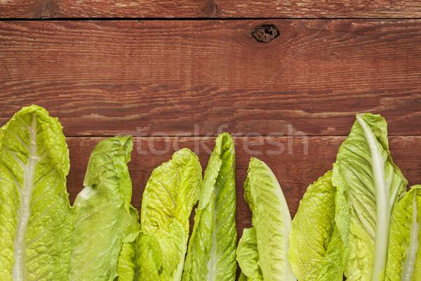 fresh romaine lettuce Stock photo © PixelsAway