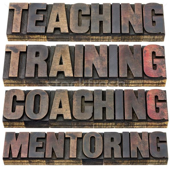 Onderwijs opleiding mentoring collage geïsoleerd Stockfoto © PixelsAway
