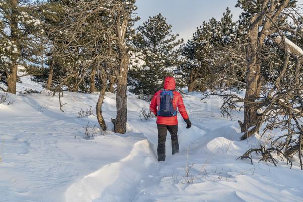 winter hiking in Colorado Stock photo © PixelsAway