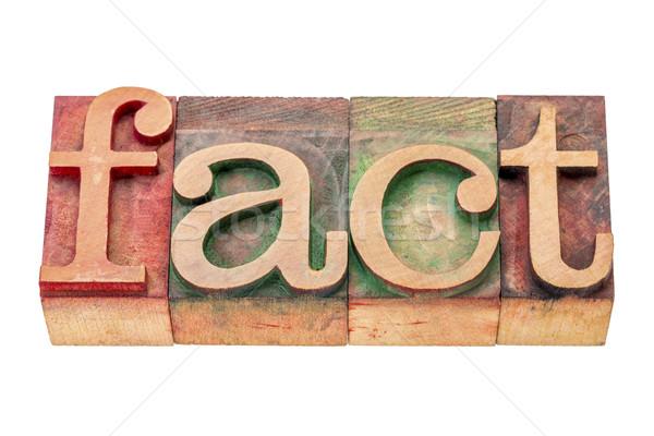 факт слово аннотация изолированный древесины Сток-фото © PixelsAway
