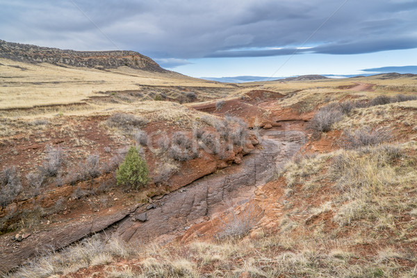dry creek at Colorado foothills in springtime Stock photo © PixelsAway