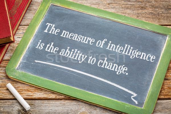 Maatregel verstand vermogen verandering tekst Stockfoto © PixelsAway