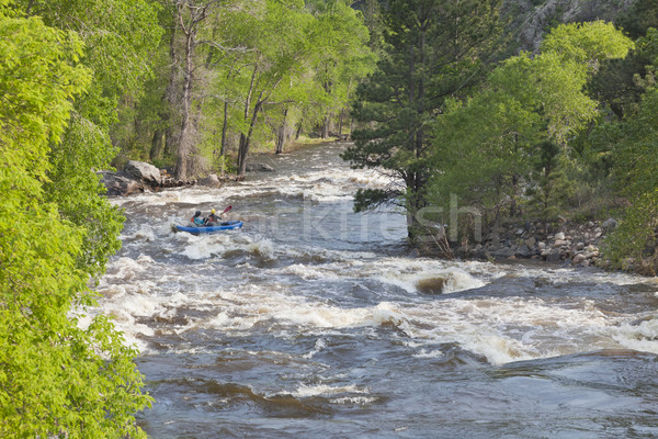 Springtime whitewater in  Colorado Stock photo © PixelsAway