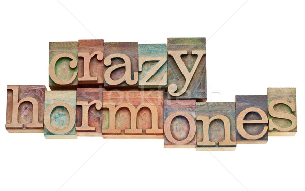 crazy hormones text  in wood type Stock photo © PixelsAway