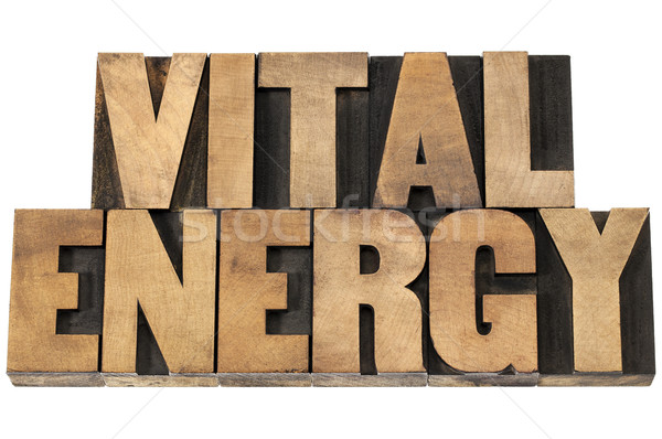 vital energy in wood type Stock photo © PixelsAway