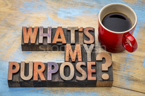 What is my purpose question Stock photo © PixelsAway