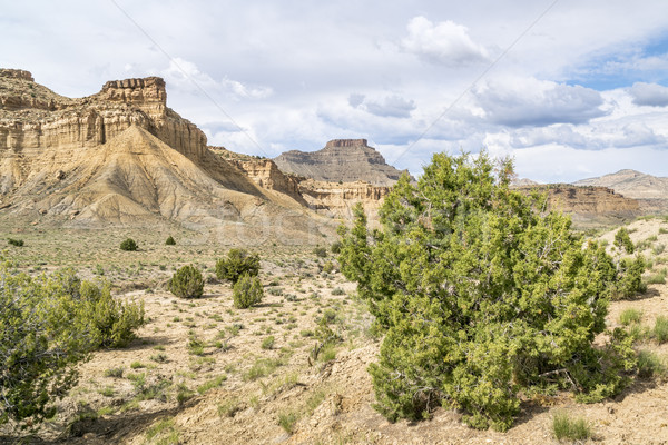 Stock photo: desert landscape of Book Cliffs in eastern Utah