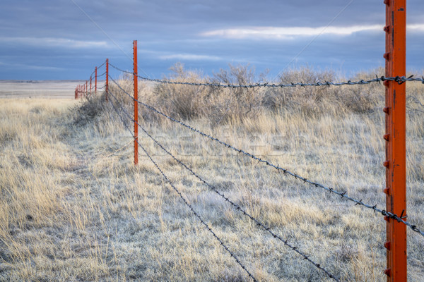 Barbed wire fence in Pawnee Grassland Stock photo © PixelsAway