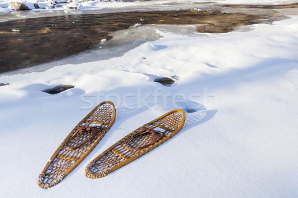 классический несут лапа берега частично Сток-фото © PixelsAway