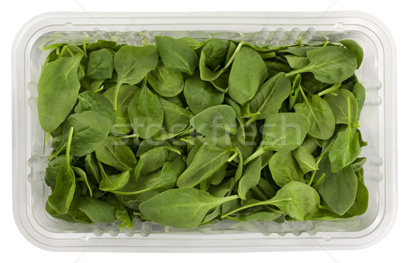 green baby spinach in a clear box Stock photo © PixelsAway