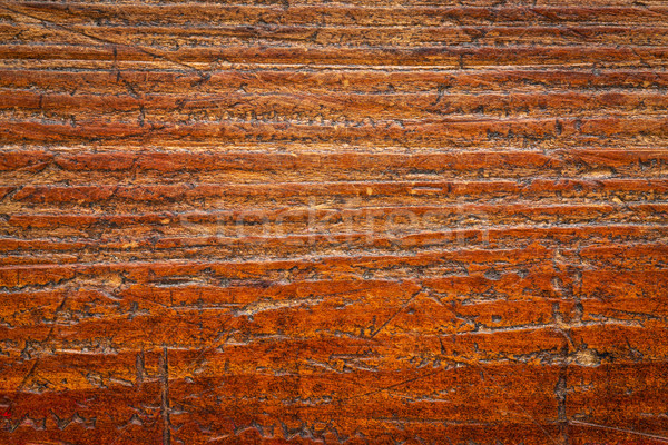 background texture of grunge wood Stock photo © PixelsAway