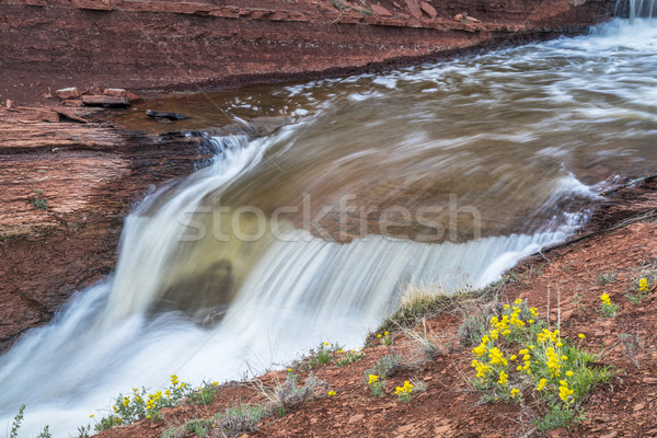 creek with waterfalls at Colorado foothills Stock photo © PixelsAway