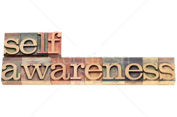 self-awareness word in wood type Stock photo © PixelsAway