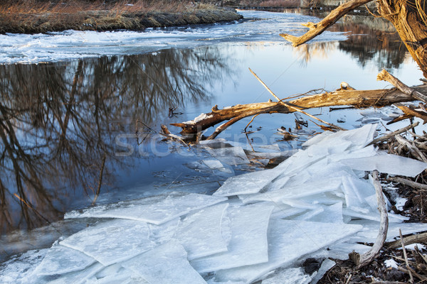 Poudre River with icy shores Stock photo © PixelsAway