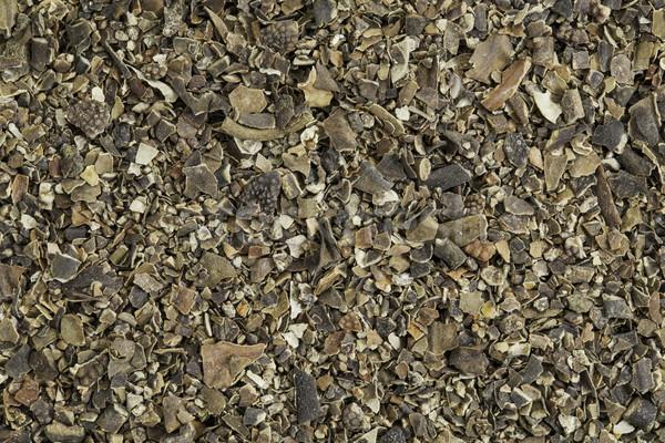 bladderwrack seaweed Stock photo © PixelsAway