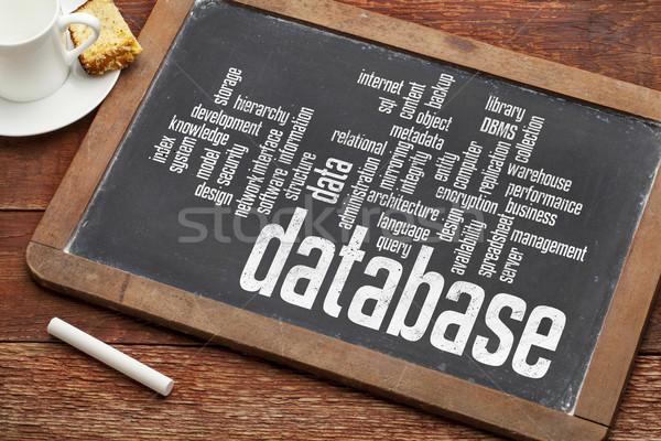 Database word cloud lavagna vintage gesso Cup Foto d'archivio © PixelsAway
