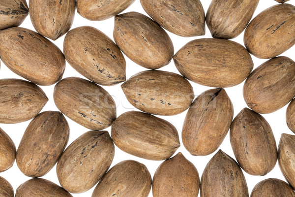 pecan nuts on white background Stock photo © PixelsAway