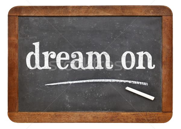 dream on blackboard sign Stock photo © PixelsAway