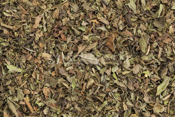Menthe poivrée thé texture organique détacher feuille Photo stock © PixelsAway