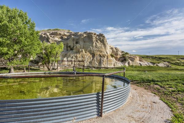 cattle water tank Stock photo © PixelsAway