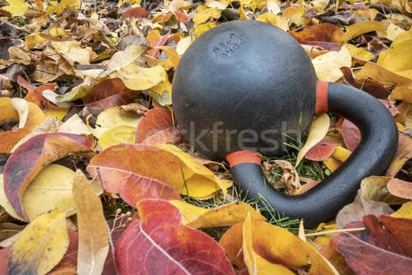 exercise kettlebell in leaves Stock photo © PixelsAway