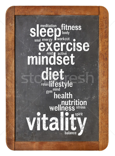 vitality  word cloud on blackboard Stock photo © PixelsAway